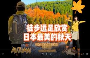 猪ノ瀬戸湿原におけるトレッキングコース